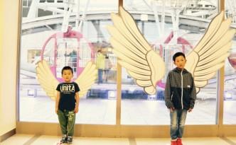 天使の羽ペアー