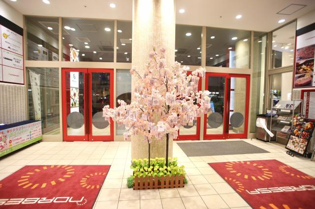 ノルベサ館内の桜