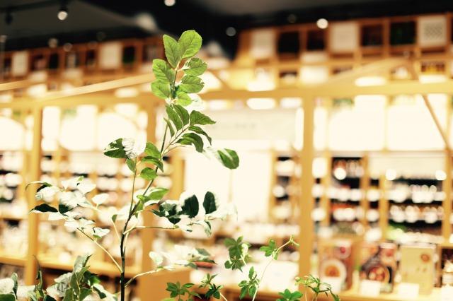 北海道の暮らし百貨店1